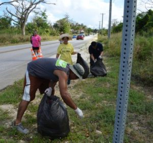 Island wide cleanup 201602