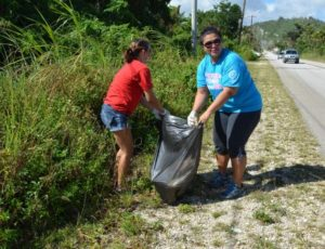 Island wide cleanup 201618